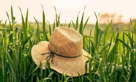 Looking for tips to clean your hat? – Read on!